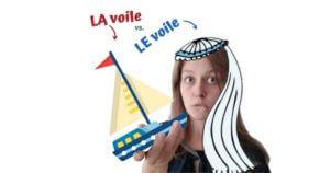 homonyma ve francouzstine